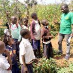 Activités des préadolescents en apprentissage pour                 servir leur communauté